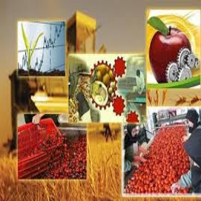 The Investment of 500 billion Tomans(Iranian Currency) in the Transformation Industries of Hamedan
